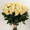 Пич Аваланж-элитные розы