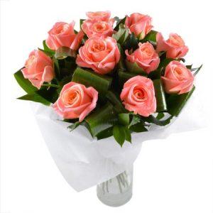 Розы Коралл